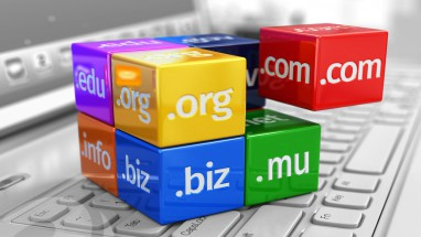What is a domain name .mu .org .net for Mauritius Companies